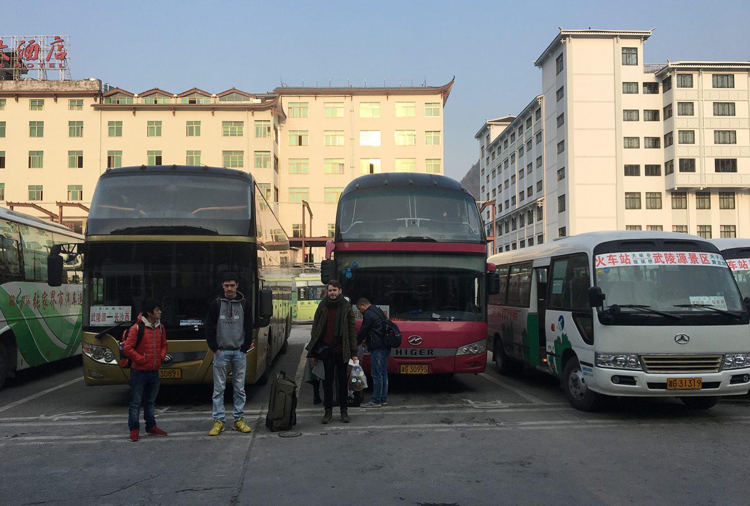 Автобусы бывают разные: вот такие комфортабельные ездят на более длинные расстояния